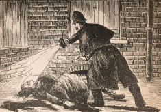 Is Jack the Ripper buried in Leavesden Cemetery?